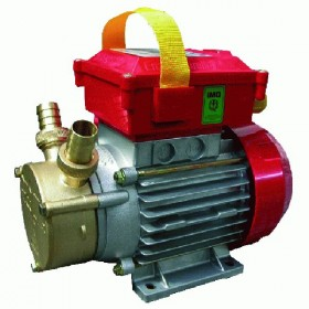 ROVER ELECTRIC PUMP FOR TRANSFER M - 25 HP. 0.8