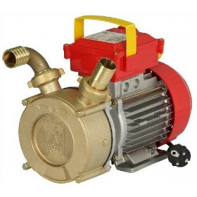 ROVER ELECTRIC PUMP FOR TRANSFER M - 35 HP. 1.0