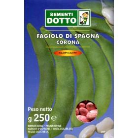 SEMI DI FAGIOLO RAMPICANTE BIANCO DI SPAGNA GR. 250