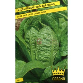 SEEDS OF GREEN ROMAN LETTUCE FROM THE ORTOLANI