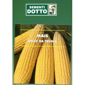 SWEET CORN SEEDS FOR TABLE GR. 50