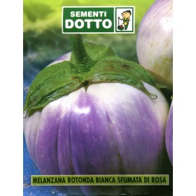 WHITE ROUND EGGPLANT SEEDS SHADED WITH PINK