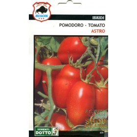 ASTRO HYBRID F1 SPECIALITY BISON TOMATO SEEDS