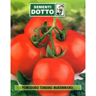 STEEL MAREMMANO TOMATO SEEDS FOR PRESERVES