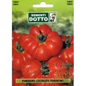 TOMATO SEEDS FOR COSTOLUTO FIORENTINO SALAD