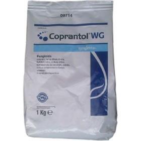 SYNGENTA COPRANTOL WG KG. 1 OSSICLORURO DI RAME 32%