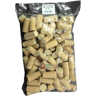 CORK PLUG WITH PINS MM. 21x40 PIECES 100