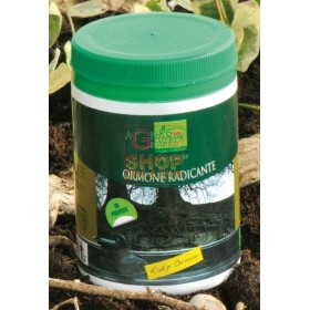 VIVO GREEN RAPID HORMON ROOTING HORMONE GR. 100