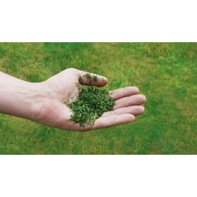 Einhell petrol lawn mower GC-PM 56 S HW -