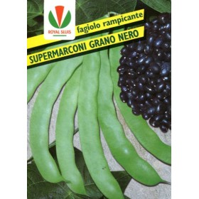 FAGIOLO GR. 500 RAMP. SUPER MARCONI S.NERO ROYAL SEED