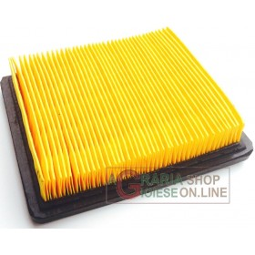 PAPER AIR FILTER FOR COMBUSTION LAWNMOWER JET SKY DY18-19 T475
