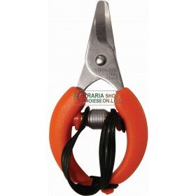 SCISSORS FOR HARVESTING CITRUS ORANGES MANDARINS LEMONS