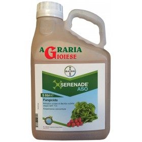 BAYER SERENADE ASO FUNGICIDE BASED ON Bacillus subtilis LT. 5