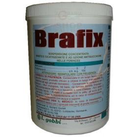 GOBBI BRAFIX MASTIC FOR GRAFTING PROTECTIVE HEALING KG. 1