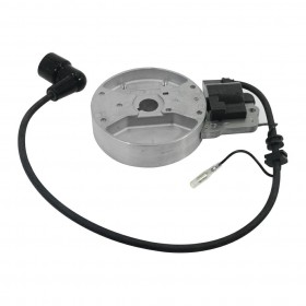 ELECTRIC COIL AND FLYWHEEL KIT FOR EB800 BLOWER