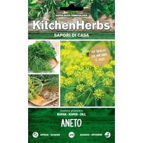 KITCHEN HERBS DILL SEEDS