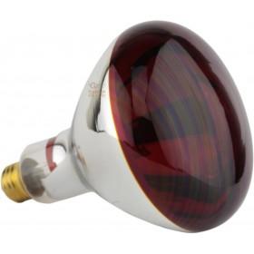 Lampada ad infrarossi rossa E27 Watt. 250 R127