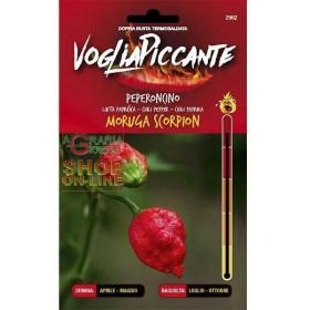 VOGLIA PICCANTE SEMI DI PEPERONCINO PICCANTE MORUGIA SCORPION