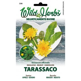 WILD HERBS SEMI DI TARASSICO
