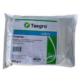 SYNGENTA TAEGRO FUNGICIDA BIOLOGICO A BASE DI Bacillus