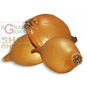 ONION BULBS CENTURION F1 KG. 0.500
