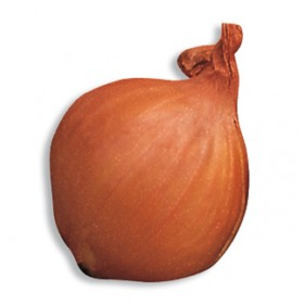ONION BULBS SHALLOT RED SUN 7/12 GR. 500