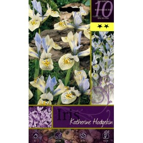 FLOWER BULBS IRIS KATHERINE HODGEKIN N. 10