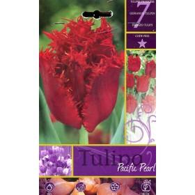 FLOWER BULBS TULIPA PACIFIC PEARL N. 7