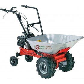 EUROSYSTEM CARRY 450 BRIGGS AND STRATTON POWER TRUCK