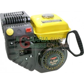 VERTICAL FOUR STROKE PETROL ENGINE FOR PETROL SNOW SWEEPERS HP. 6.5 RECOIL STARTER