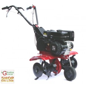 MOTOZAPPA MOD. EURO5 LONCIN OHV160 CM.75 WITH REVERSE