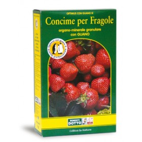 OPTIMUS FERTILIZER WITH GRANULAR STRAWBERRY GUANO AND KG. 5