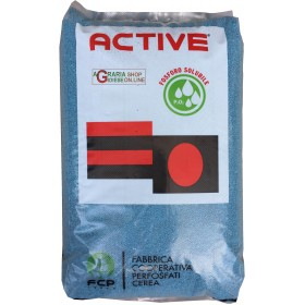 ACTIVE LAND ORGAN MINERAL FERTILIZER 30 NPK 10.6.15 WITH MICRO KG. 25
