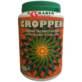 Cropper extracts of seaweed Ascophillum Nodosum allowed in