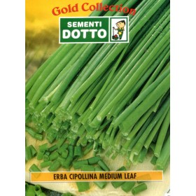 DOTTO BAGS SEEDS OF CHION