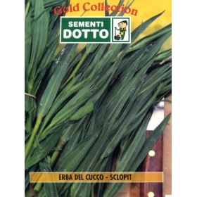 DOTTO BAGS SEEDS OF CUCCO GRASS - SCLOPIT