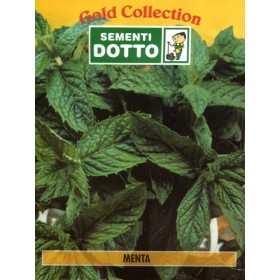 DOTTO MINT SEED BAGS