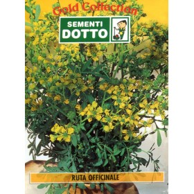DOTTO BAGS SEEDS OF OFFICINALE RUTA