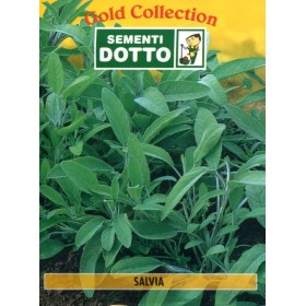 DUCT BAGS SEEDS OF OFFICINAL SAGE