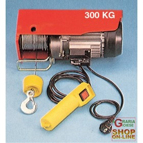 ELECTRIC HOIST HERCULES KG. 300/600 CABLE ML. 18
