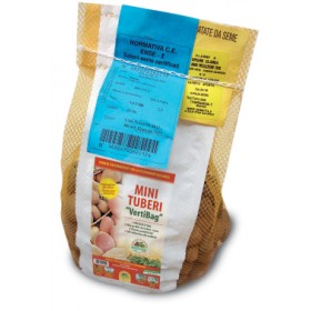 POTATOES FROM SEED MINI TUBERI MONALISA BAG OF kg. 2