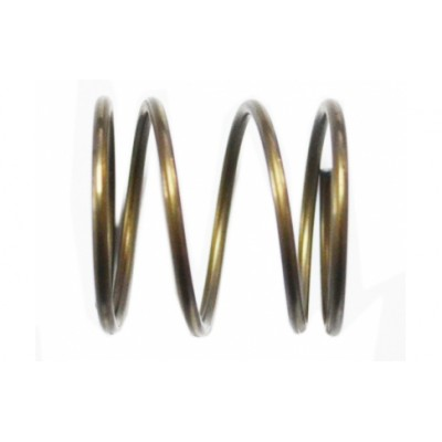 REPLACEMENT SPRING FOR BRUSHCUTTER HEAD KNOCK AND GO